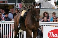 Arvika Legionniere & Louise Duffy, Dublin Horse Show