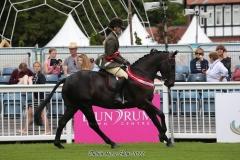 Merrycorner Mister Bui & Louise Duffy, Dublin Horse Show